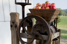 Antique Cider Press